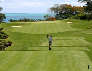 Golfer-golf course